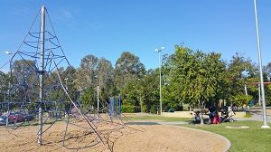 Adventure climbing nets at All Abilities Playground