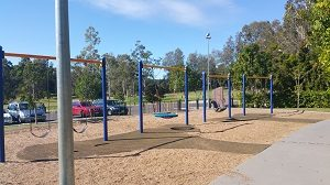 Variety of swings at All Abilities Playground